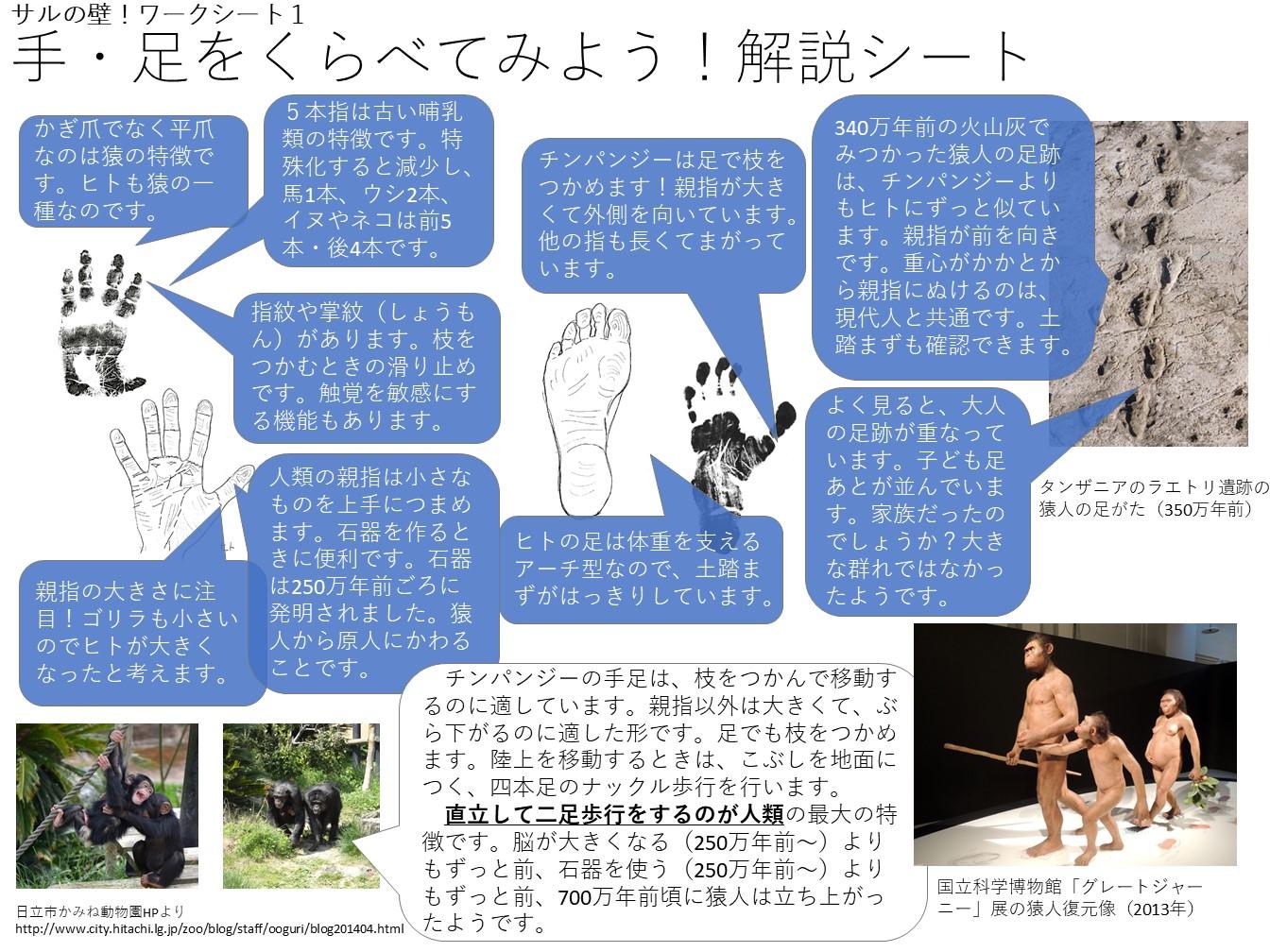 http://c14.um.u-tokyo.ac.jp/wiki/public/kyokasho/wiki.cgi?page=%A5%B5%A5%A4%A5%A8%A5%F3%A5%B9%A5%A2%A5%B4%A5%E92017&file=worksheet1%2Ejpg&action=ATTACH